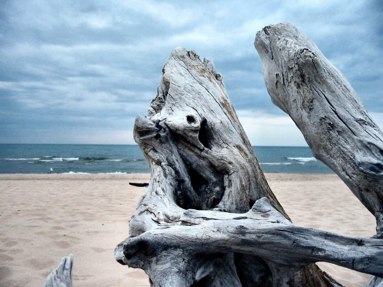 Vylidněné pláže si užijete